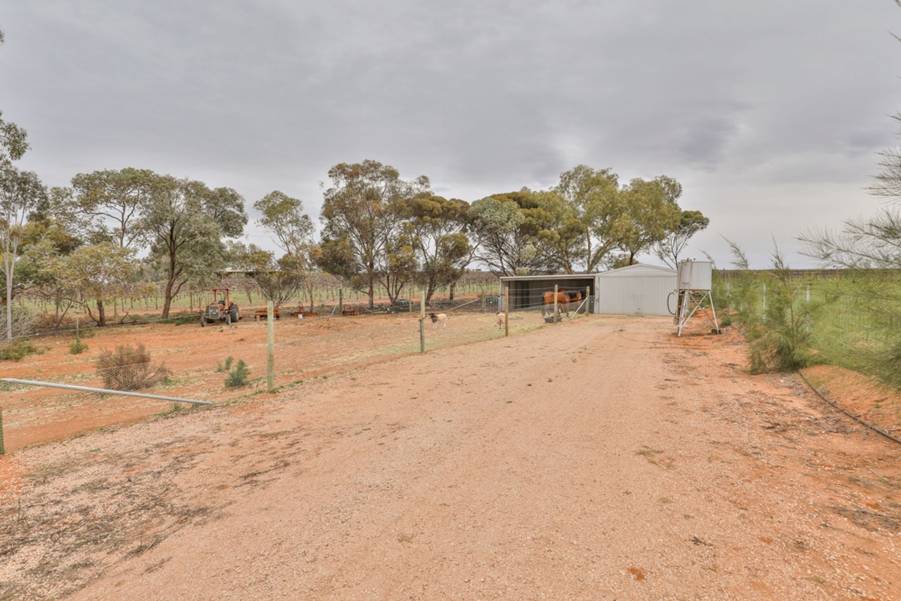 85 Johns Road, Red Cliffs, VIC 3496