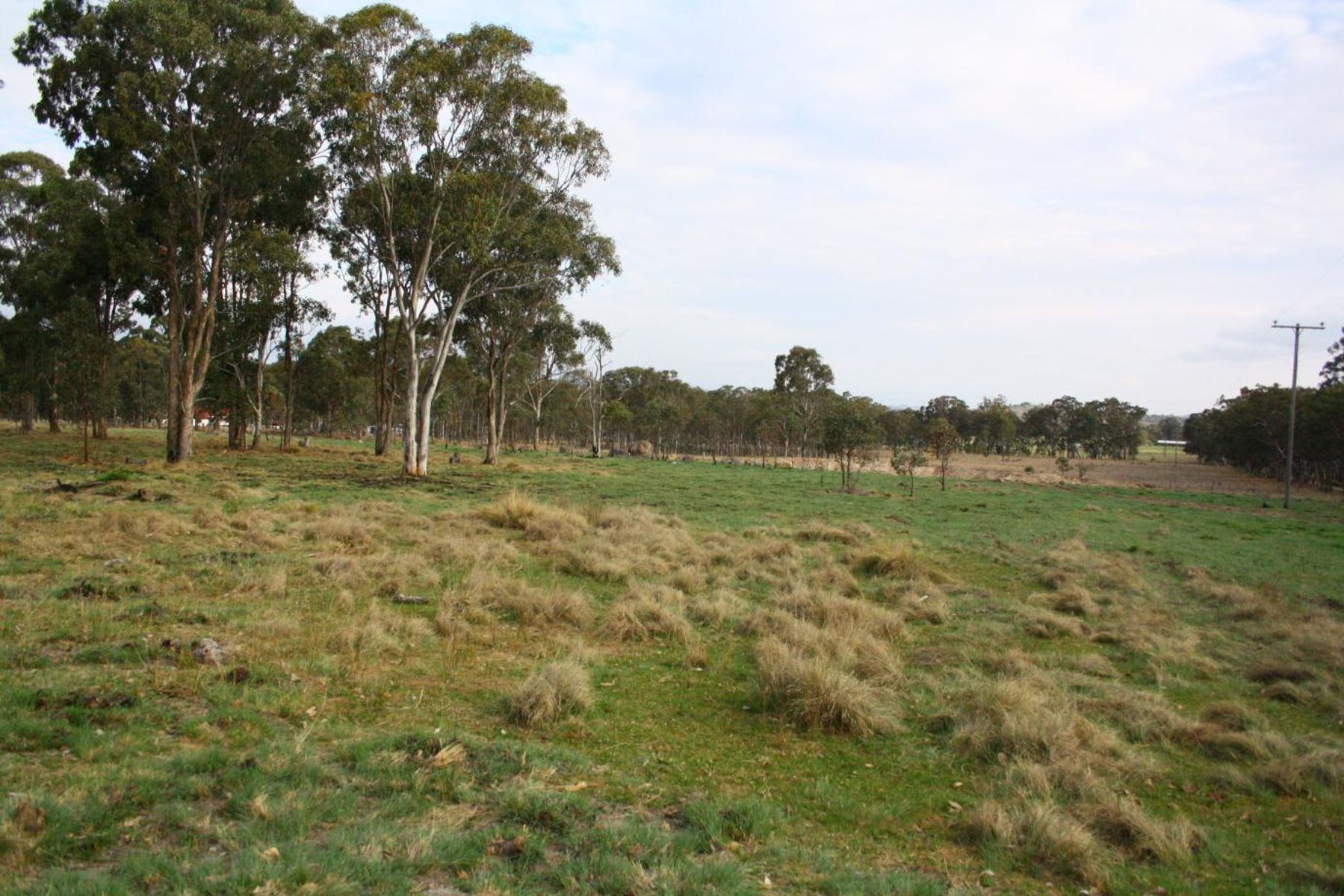 Lot 541 Geyers Road, Tenterfield, NSW 2372