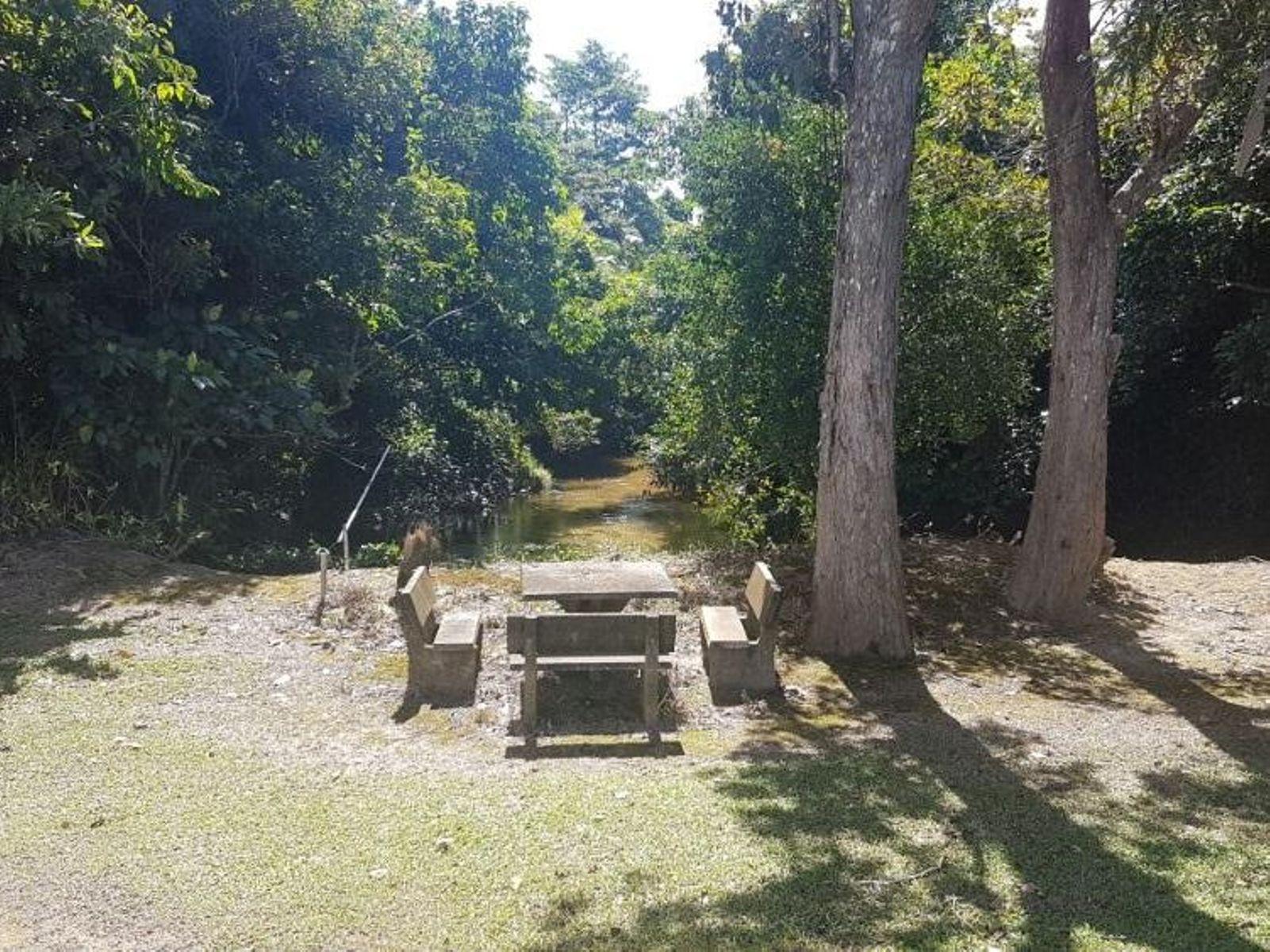 181 Formosa Road, Silkwood, QLD 4856