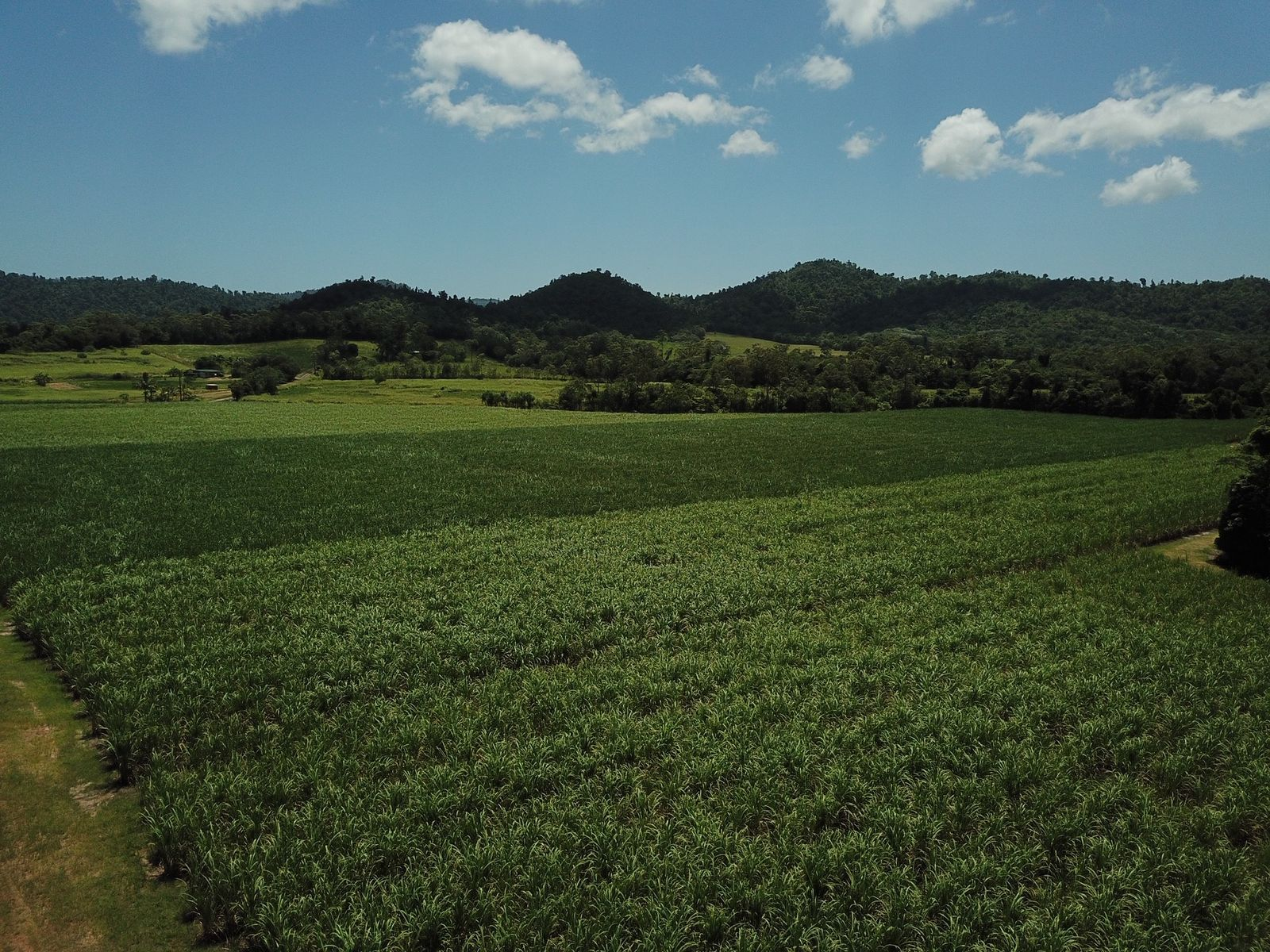 LOT 3/2223 INNISFAIL-JAPOON ROAD, Bombeeta, QLD 4871
