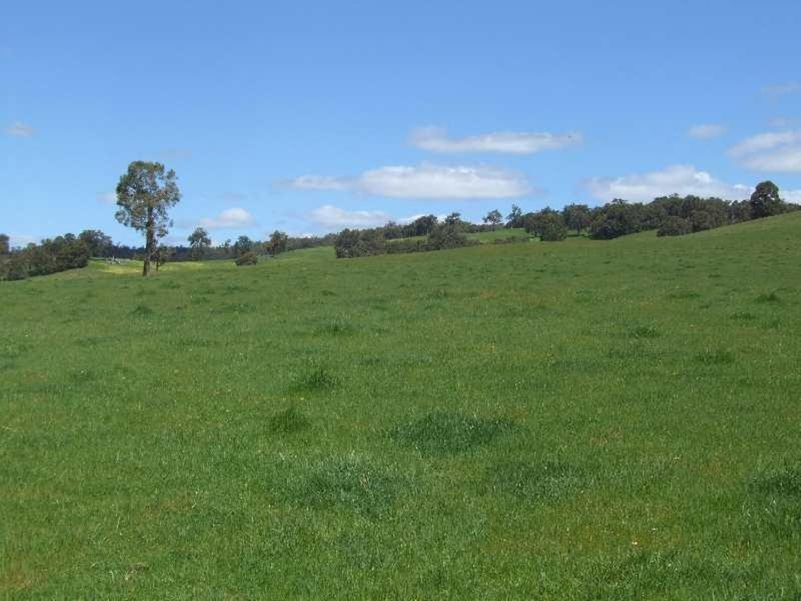 Lot 100 Price Road, Brazier, WA 6251