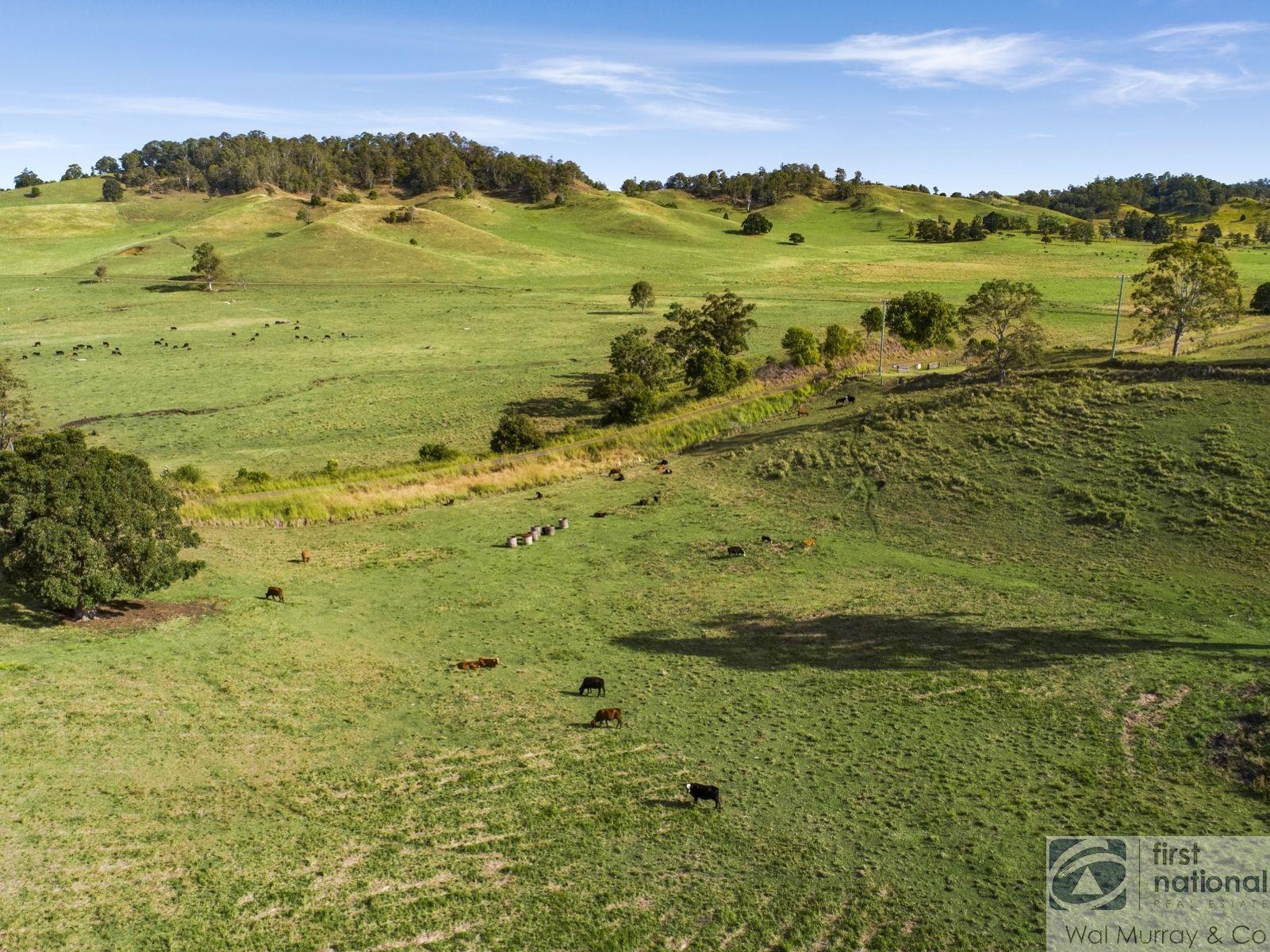 65 Brazils Road, Bentley, NSW 2480