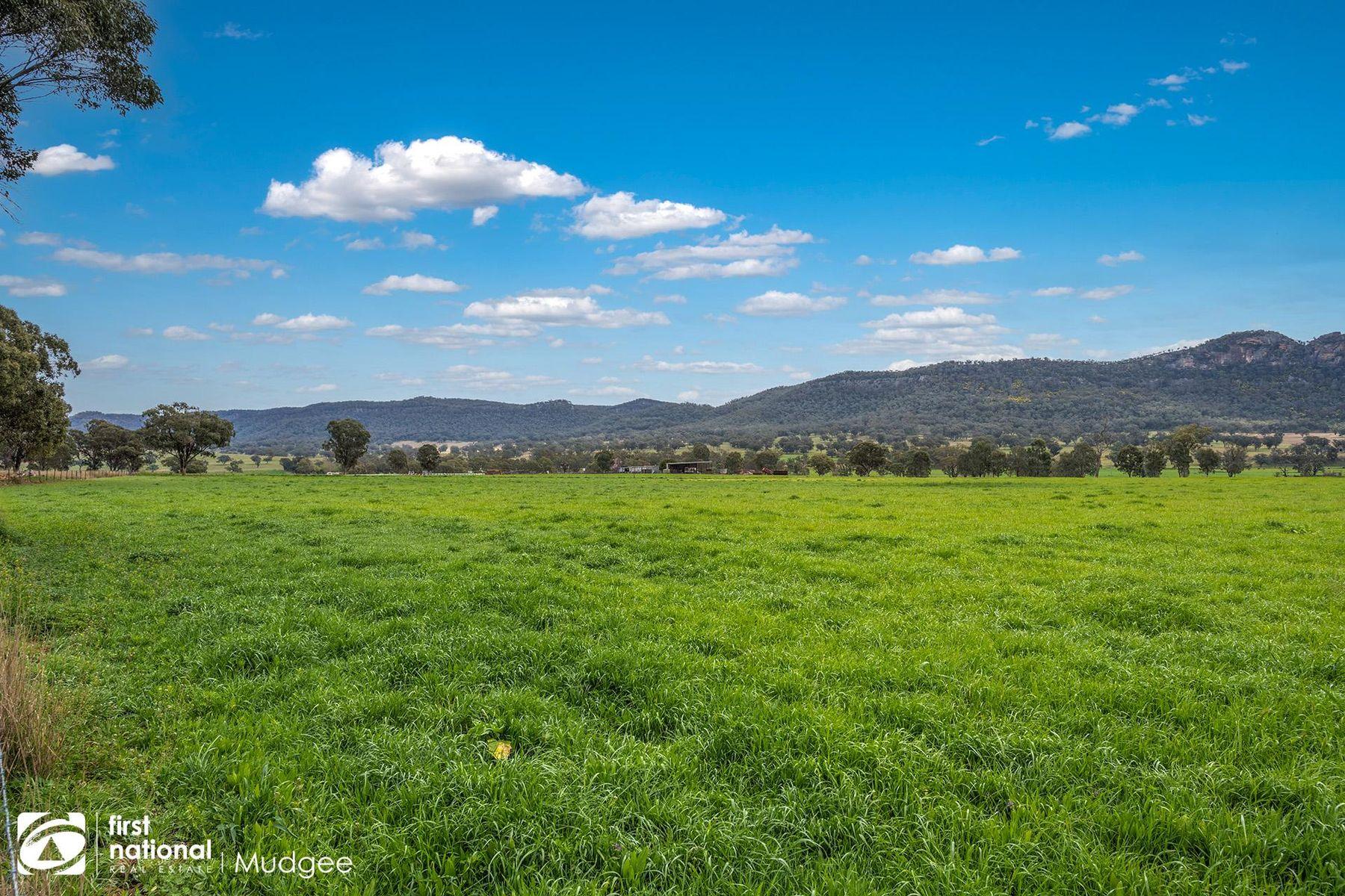 7458 Bylong Valley Way, Bylong, NSW 2849