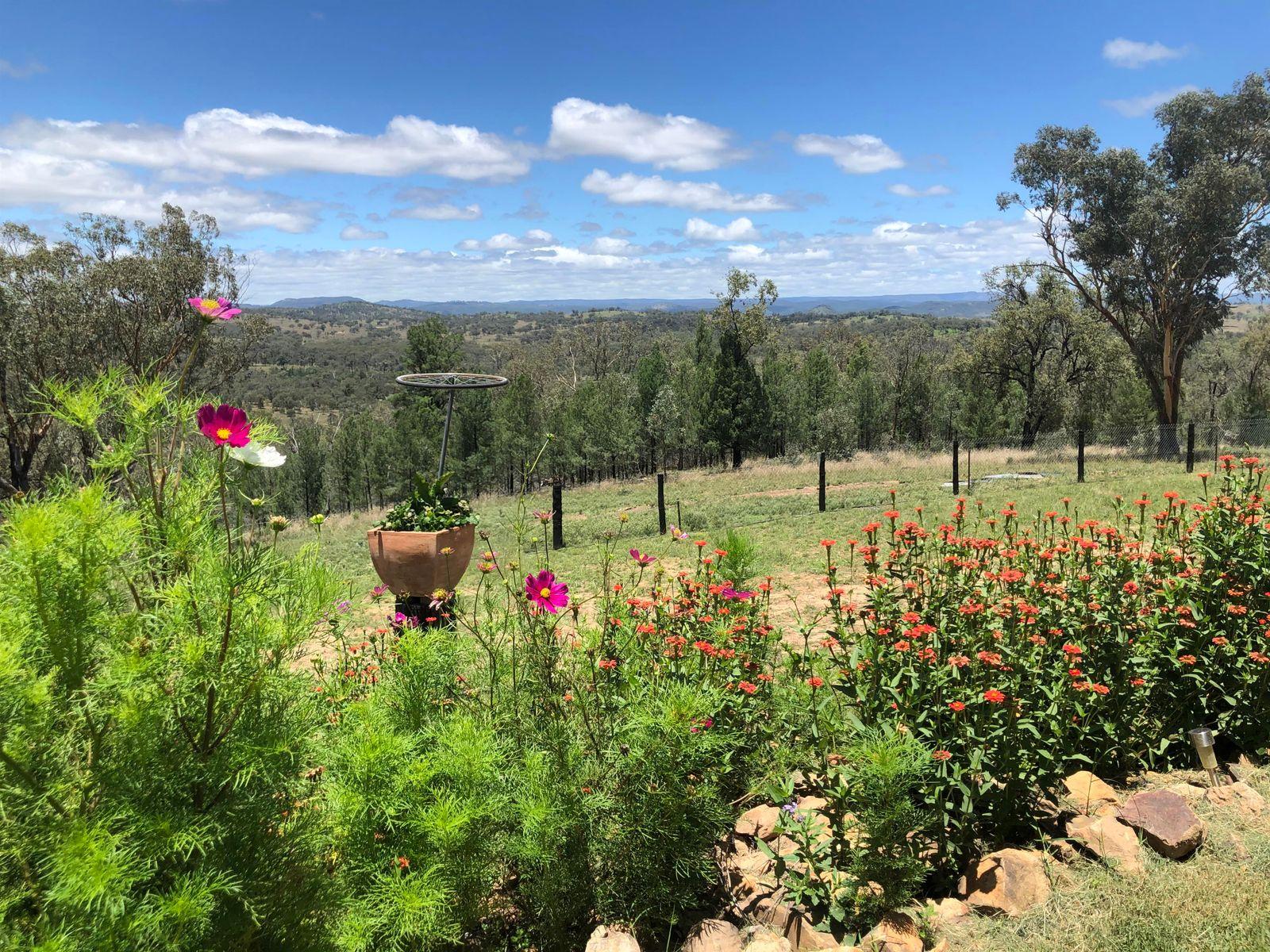 168 Mountain Creek Road, Tenterfield, NSW 2372