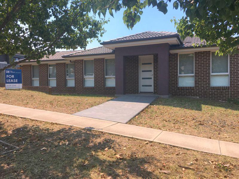 29 Ancona Avenue, Spring Farm, NSW 2570