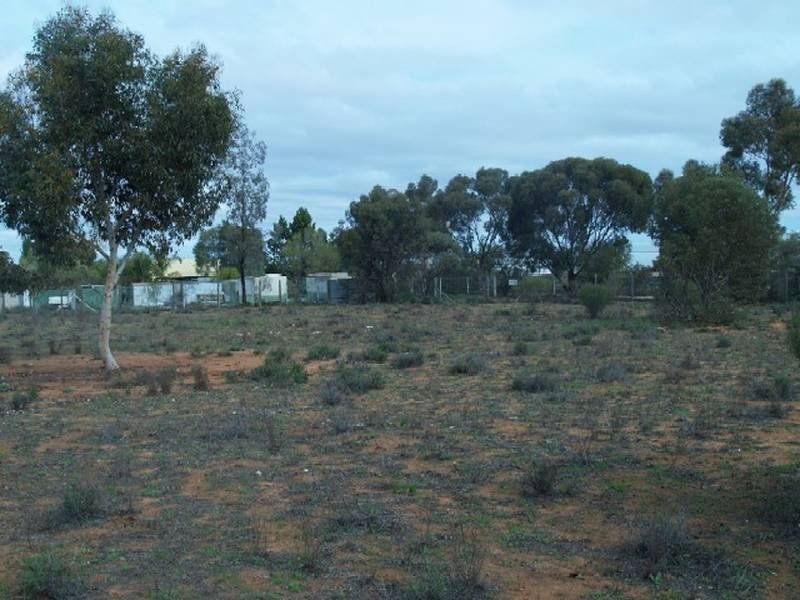 Lot 1 Checker Road, Waikerie, SA 5330