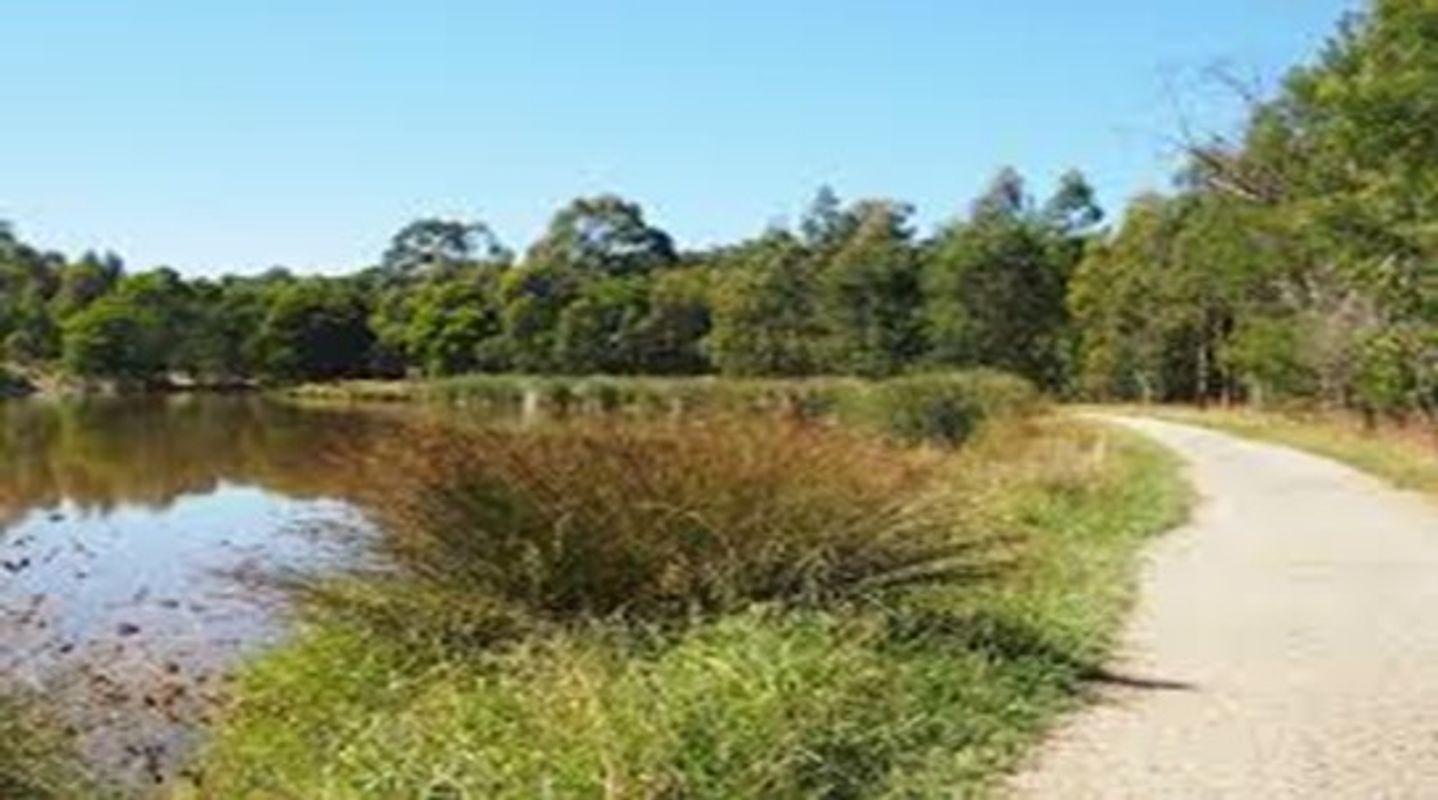 Birdsland Reserve