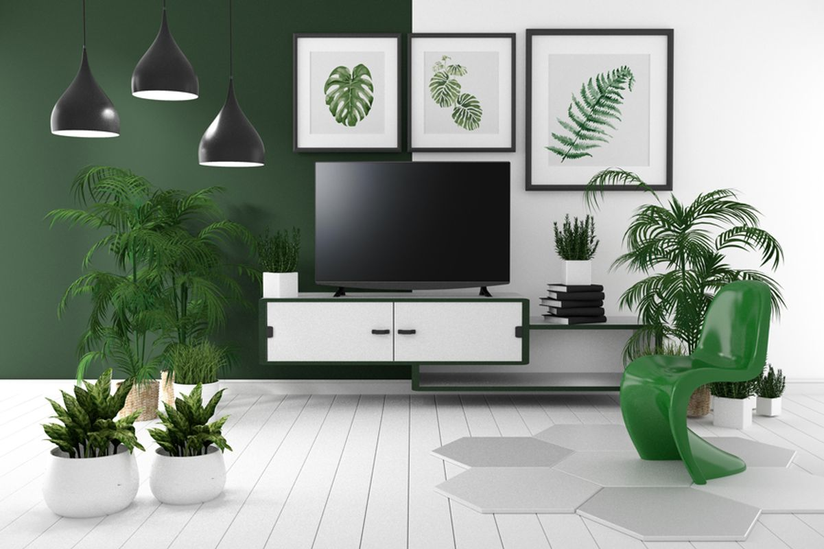 Indoor plants are back in style