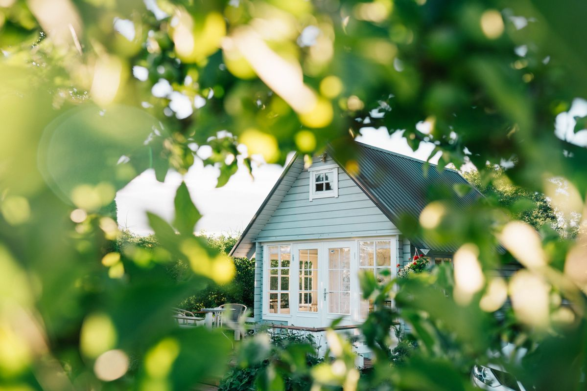 Weatherboard home through green leafy trees