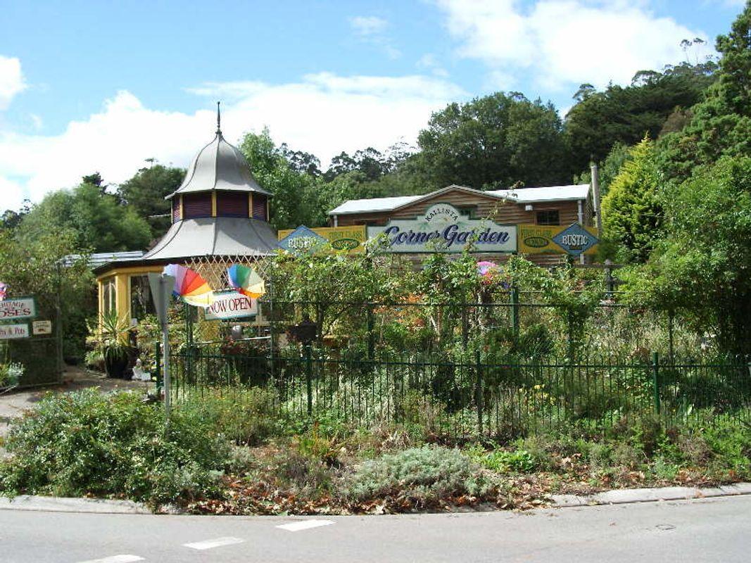 Kalista Nursery