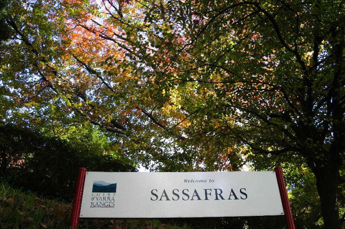 Sassafras Town Sign