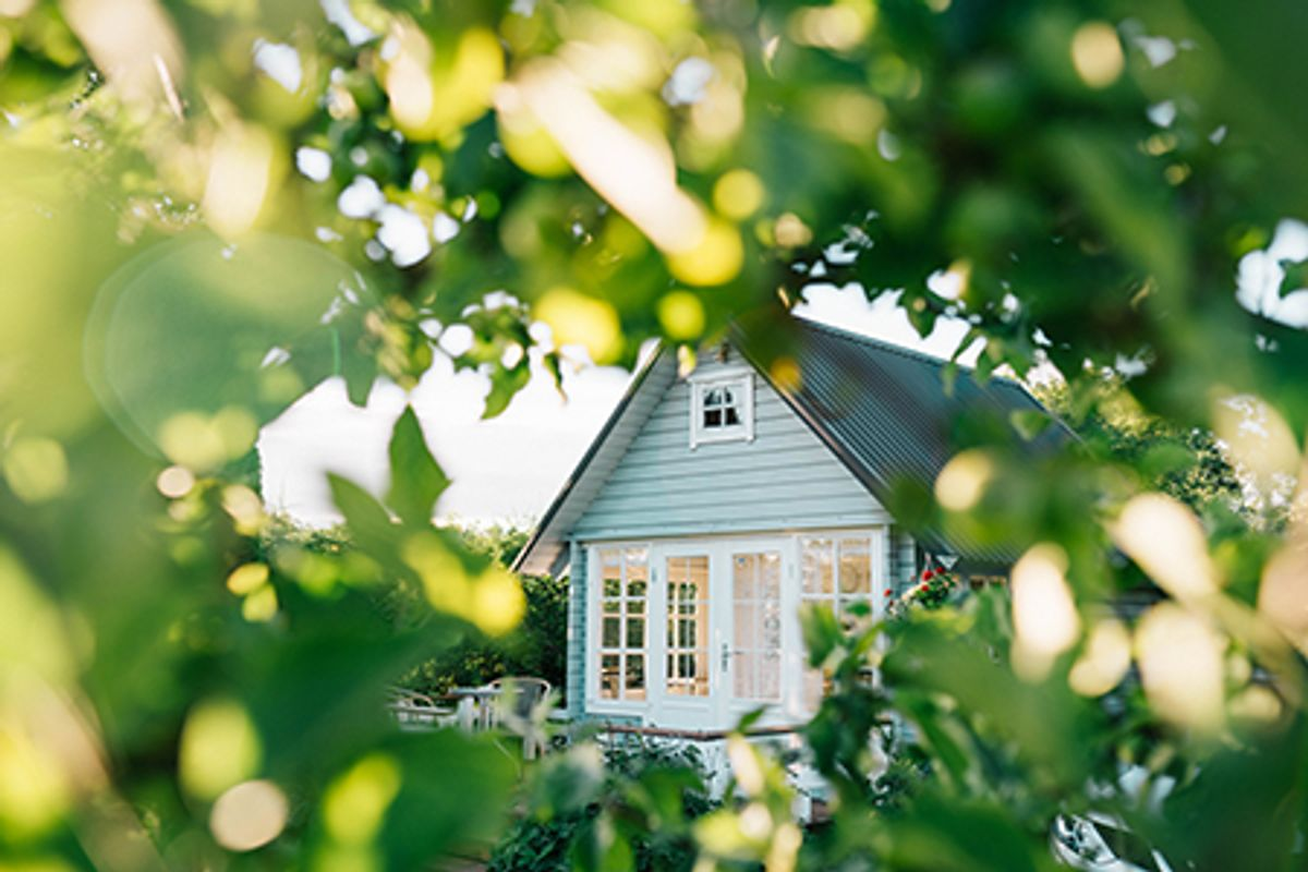 View of weatherboard home through green leafy trees