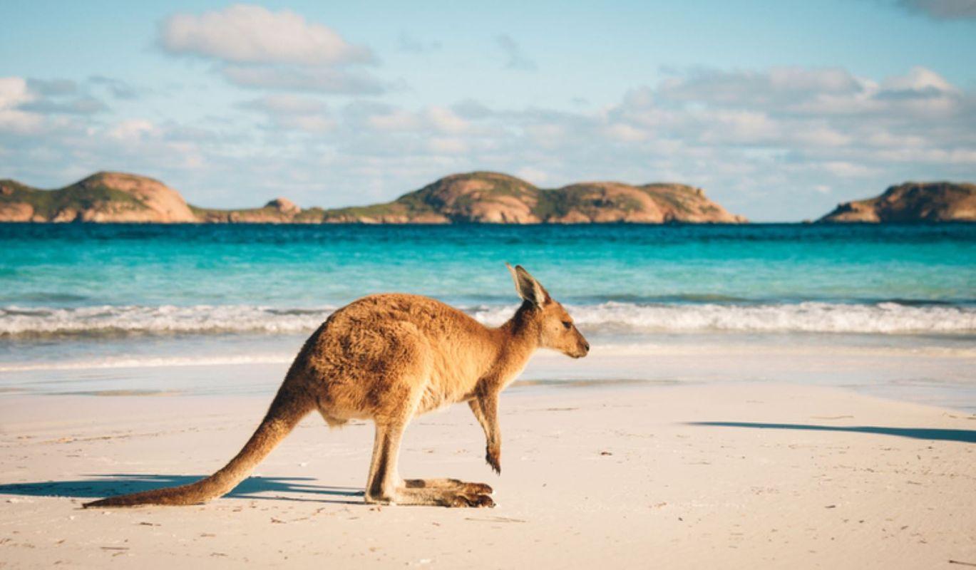 Australia's beaches