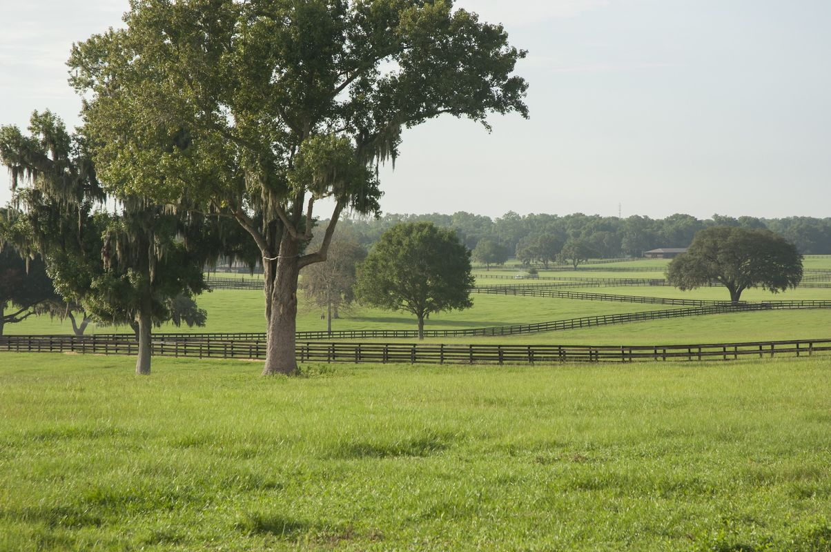 Lifestyle acreage