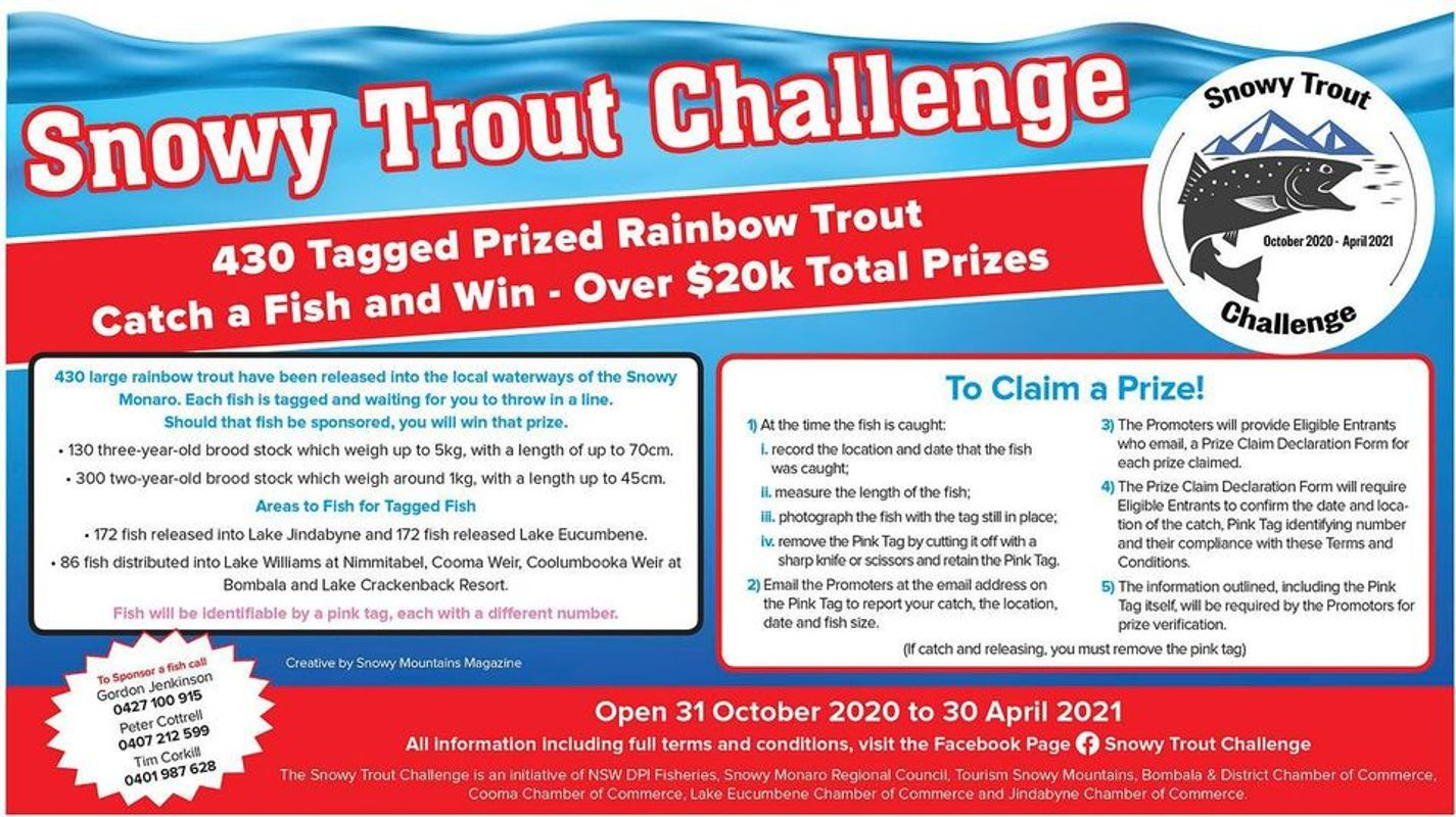 Trout Challenge info poster