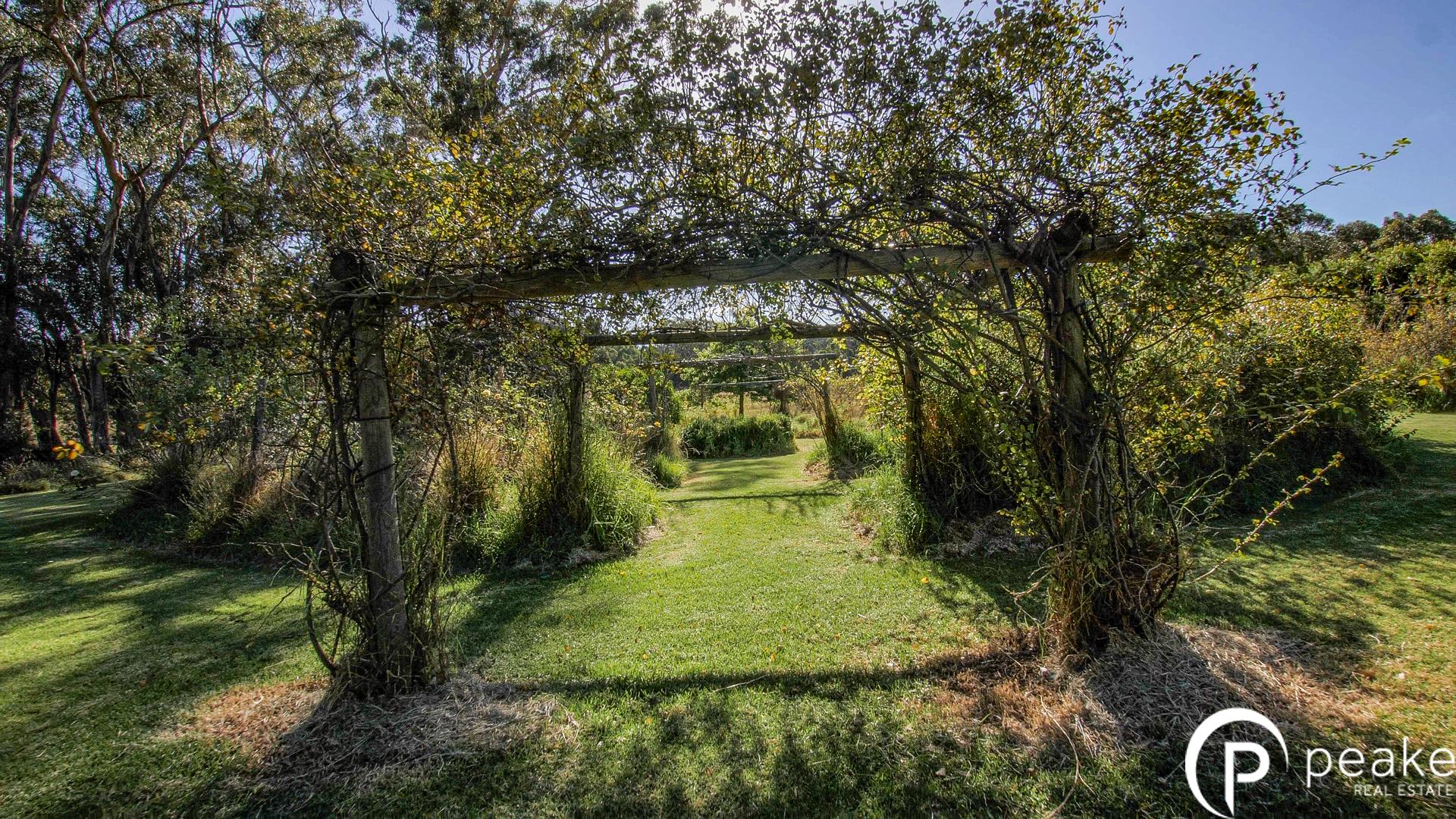 Garden SS3