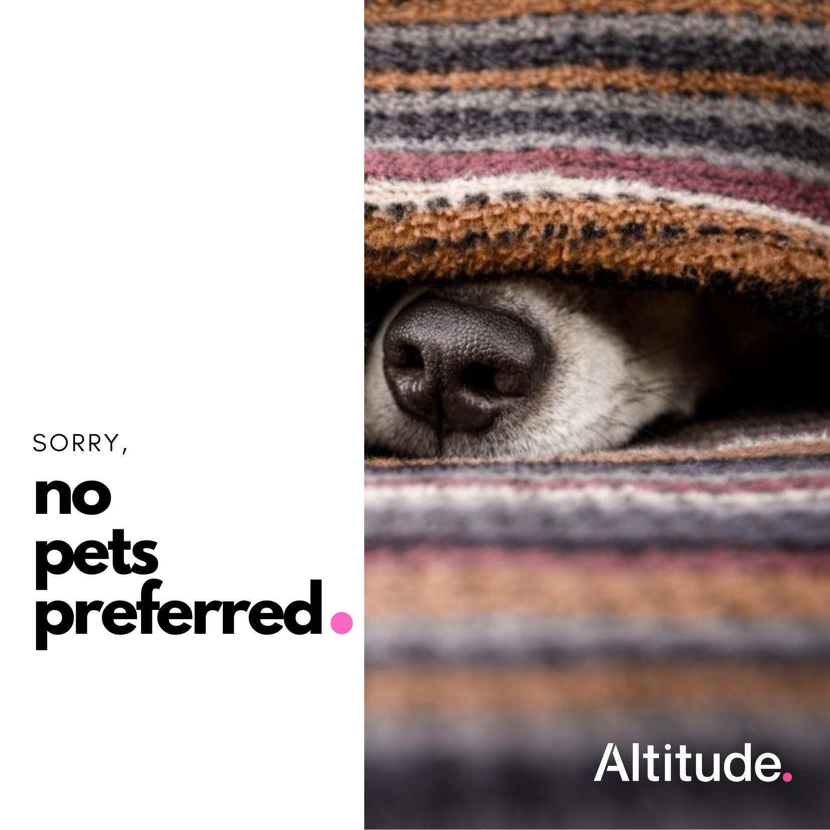 Leasing Campaign   No Pets Preferred